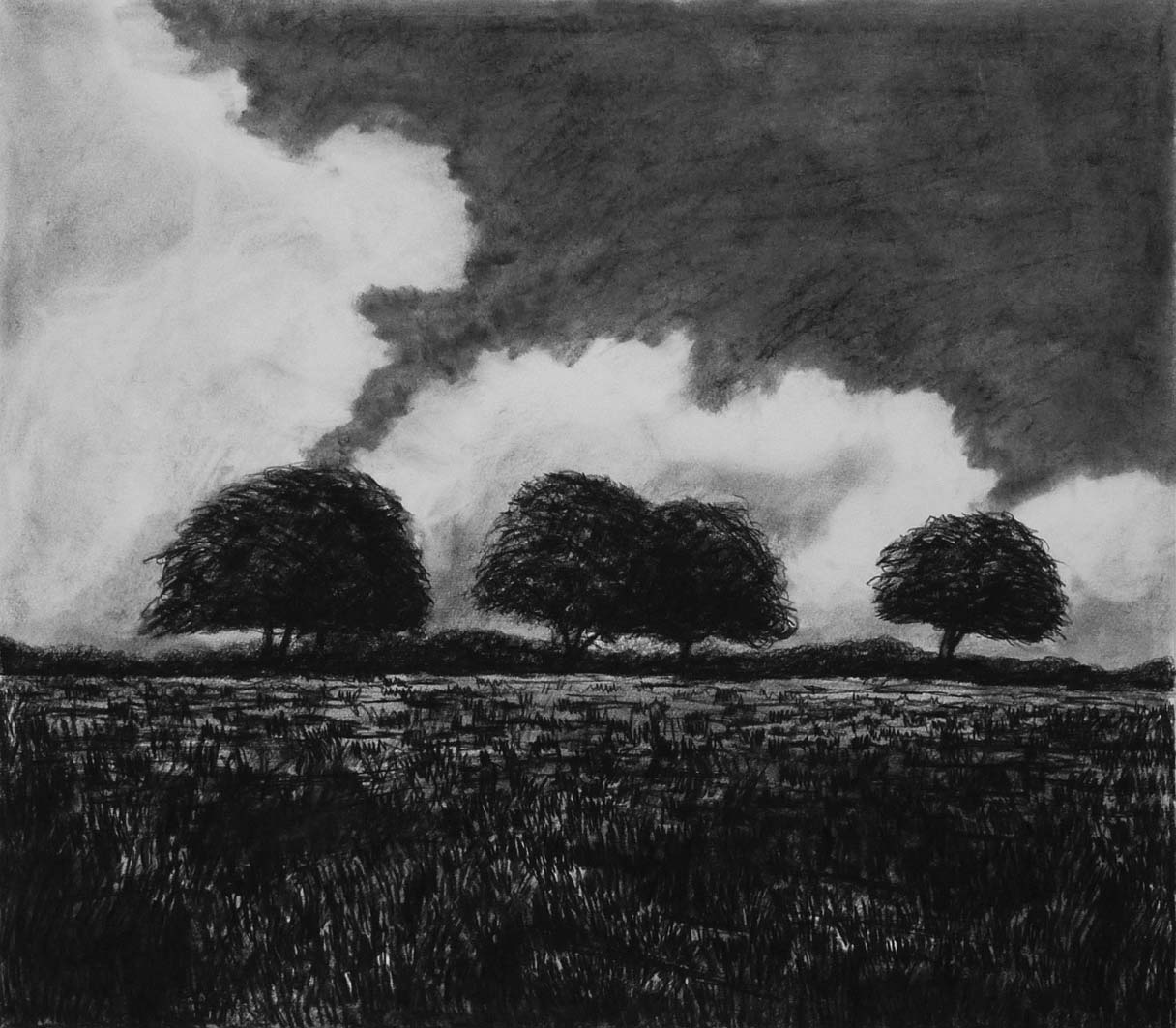 Cloudy Day in August (2), charcoal & conte, private collection