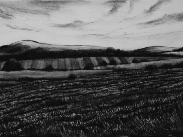 Wiltshire Landscape, charcoal & conte, private collection