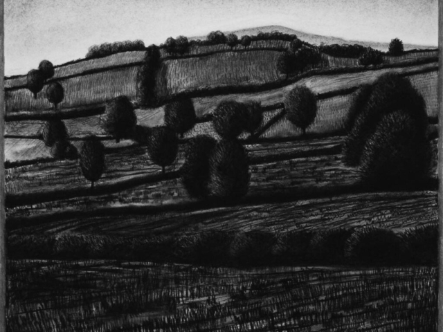 Fields and Trees, charcoal & conte, private collection
