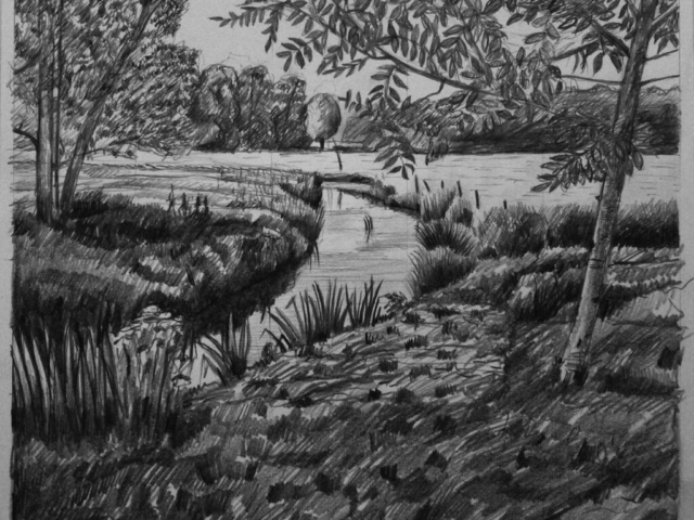 River and small Tree, pencil, design drawing for lino print