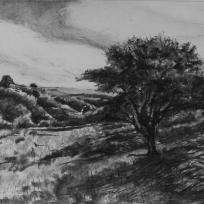 View of Vixen Tor, charcoal, private collection
