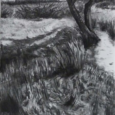 Field near Bere Alston, charcoal, 53x38cm