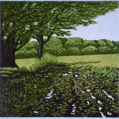 Muddy Tracks, 20x20cm, ed: 20, £150