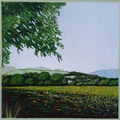 View towards Devon, 20x20cm, ed: 20, £150