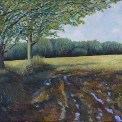 Muddy Field, oil on canvas, 50x60cm