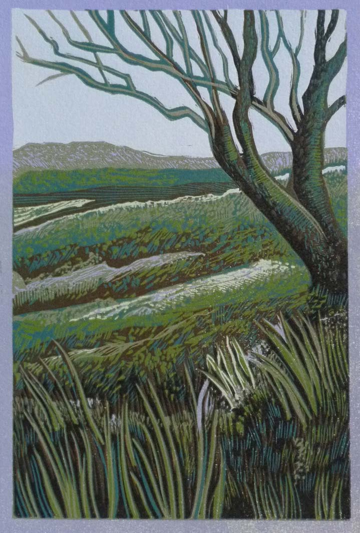 Dartmoor Landscape, 22x15cm, ed: 25, £130