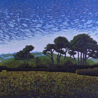 Trees above Cotehele, 22x29cm, ed: 18, £225