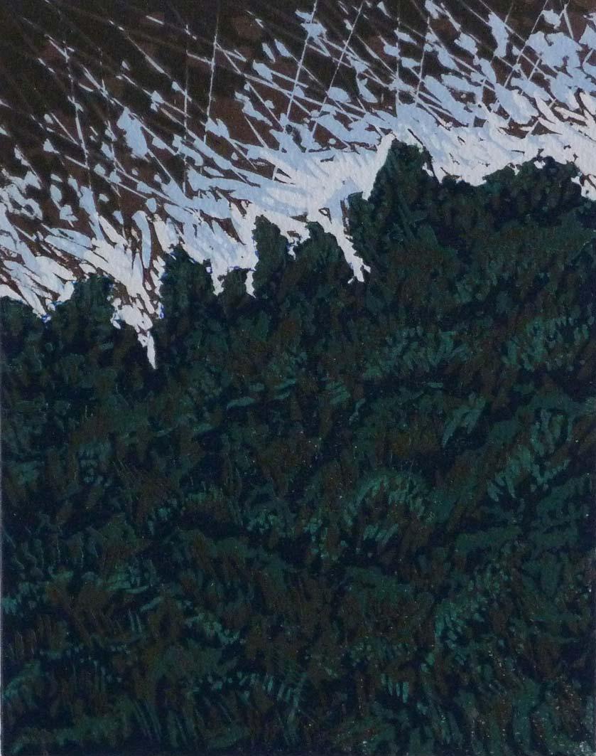 Edge of the Woods, 17.5x13.5cm, ed:7, £100