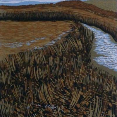 Dartmoor Stream, 17.5x13.5cm, ed:22, £100
