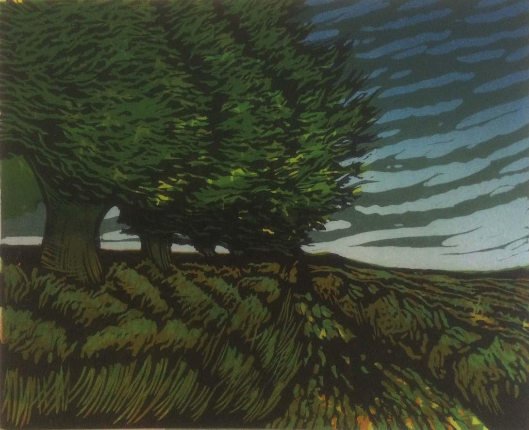 Lane with Trees, 16x20cm, edition 10, £120