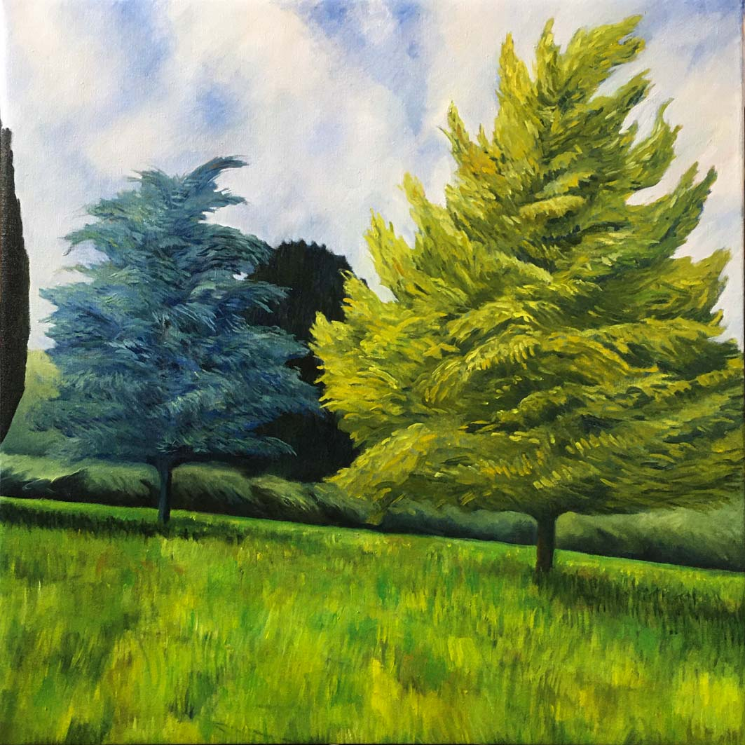 Trees at St Andrews, oil on canvas, 82x82cm
