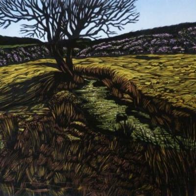 Dartmoor Lines 1, 31x38cm, edition 9, £295