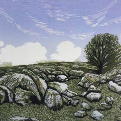 Dartmoor Lines 2, 31x38cm, edition 14, £295