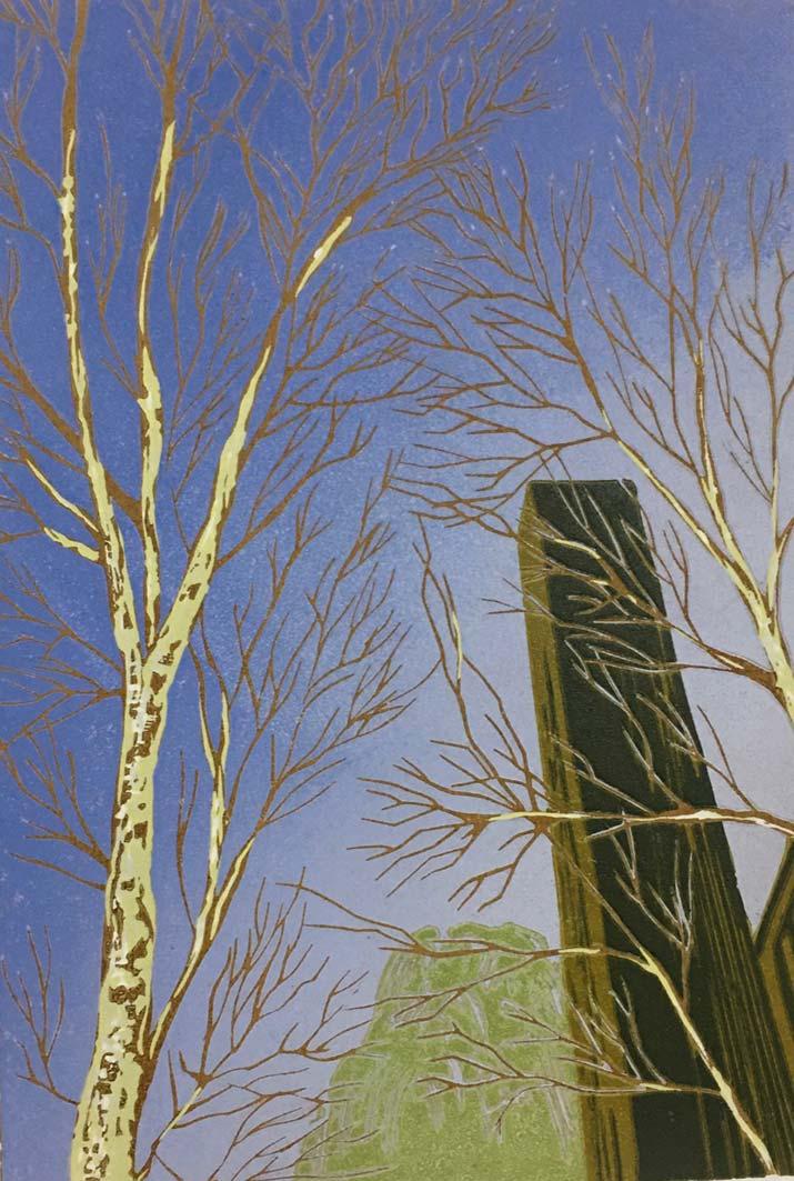Tate Birches, 26x17.5cm, ed: 20, £195