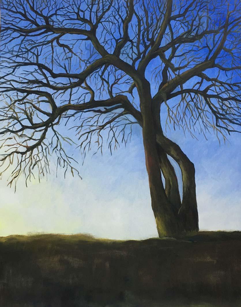 Hawthorn, oil on canvas, 90x70cm