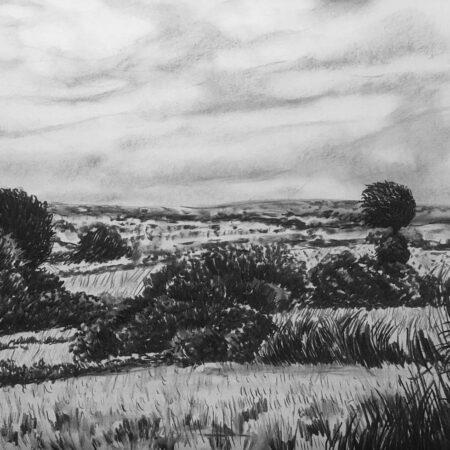 Dartmoor Landscape, charcoal, 53x76cm, £350