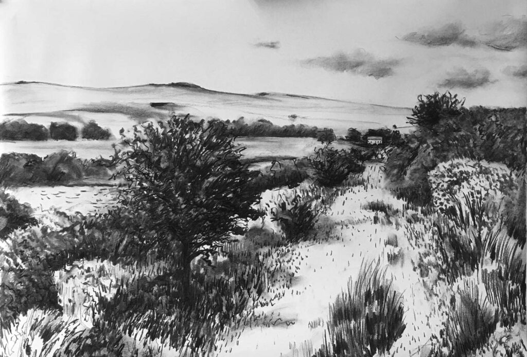 Dartmoor, nr Merivale, charcoal, 53x76cm, £350