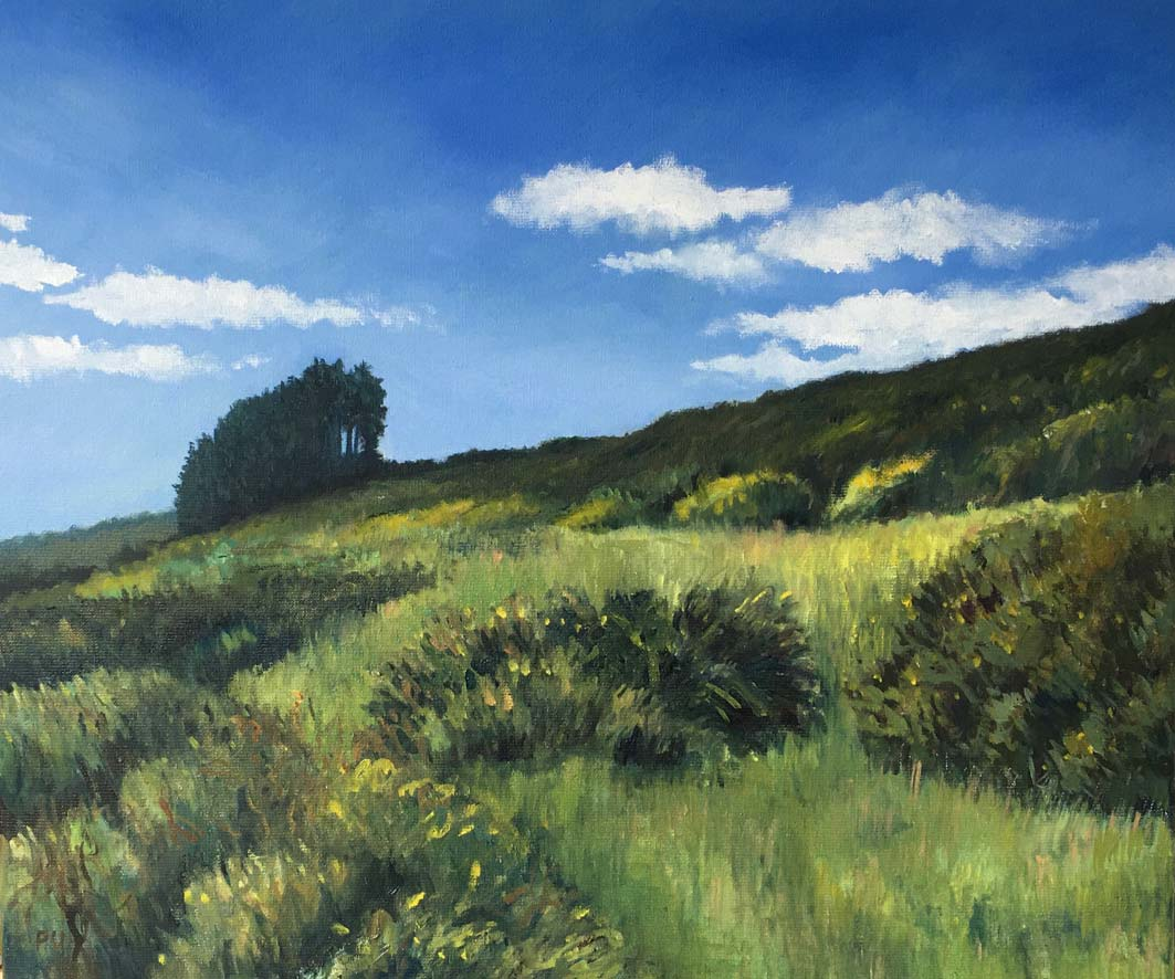 Near Crazywell Pool, oil on canvas, 50x60cm